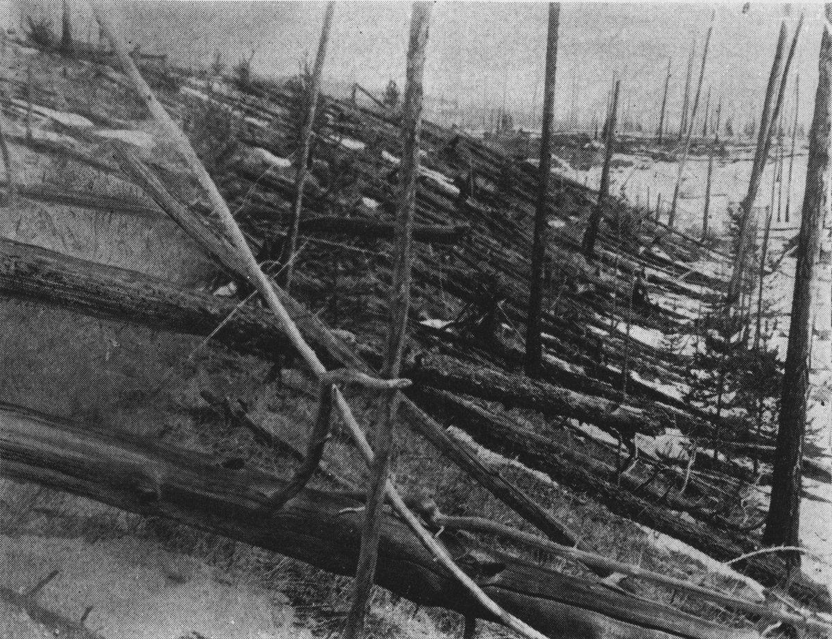 This photo from the Soviet Academy of Science shows the devastation that the 1927 expedition found