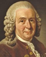 Taxonomist, botanist, physician, and zoologist Carolus Linnaeus