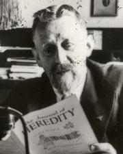 Nazi Physician Eugen Fischer
