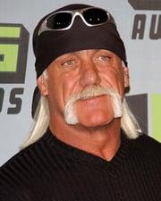 WWF Wrestler Hulk Hogan