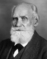 Physiologist Ivan Pavlov