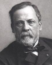 Bacteriologist Louis Pasteur